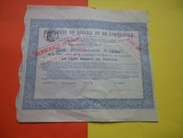 COMPAGNIE DE BISKRA ET DE L'OUED RIRH (algerie) 1902 - Shareholdings
