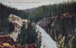 Wyoming Yellowstone National Park Virginia Casacades