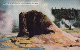 Wyoming Yellowstone National Park Giant Geyser Crater - Yellowstone