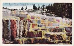 Wyoming Yellowstone National Park Hyman Terrace Mammoth Hot Springs