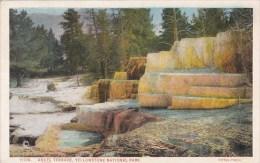 Wyoming Yellowstone Park Angel Terrace