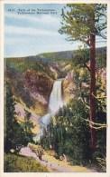 Wyoming Yellowstone National Park Falls Of The Yellowstone