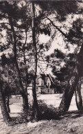 Ar - Cpsm Petit Format STELLA PLAGE - Le Square - Vue De La Forêt - France