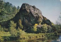 CPM Le Rocher Du Sauvage Entre Tarnac Et Nedde, à Rempnat - France