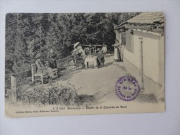 Chamonix, Chalet De La Cascade De Dard. - Chamonix-Mont-Blanc