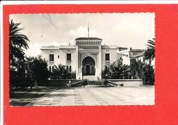 EL BIAR Cpsm La Mairie     29 Jomone - Argelia