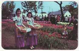 The Tulip Festival, Babylon, Long Island, N.Y. - Long Island