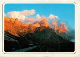 TRAMONTO SULLE PALE  DI S. MARTINO      MAXI-CARD   (VIAGGIATA) - Ohne Zuordnung