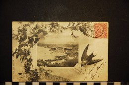 CP, 06, NICE Souvenir Hirondelle Vue Encadrée  Edition Giletta N°139 - Nice