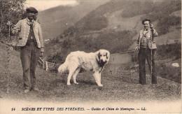 CPA  SCENES ET TYPES DES PYRENNEES Guides Et Chien De Montagne - Landbouw