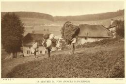 La Rentrée Du Foin Dans Les VOSGES ALSACIENNES (Braun) - Fiches Illustrées