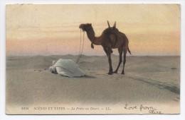 Man With Camel Praying In The Desert C1910 Biskra Batna Postmark - Magazines: Abonnements
