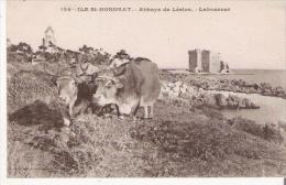 ILE ST HONORAT 124 ABABYE DE LERINS LABOUREUR (ATTELEGE DE BOEUFS BEAU PLAN) - Frankreich