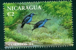 Nicaragua 1994 ( Hors Série : Guit-guit Saï ) Mnh*** - Passereaux