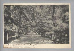 AK Afrika Tansania Lindi Deutsch-Ostafrika 1911-04-06 Foto #84 C.Vincenti - Tanzanie