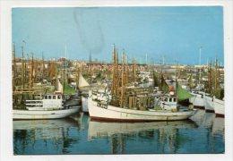 DENMARK - AK 227112 Skagen - Parti Fra Havnen - Danimarca