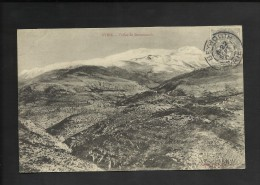 Syrie-Vall�e de Broumanah