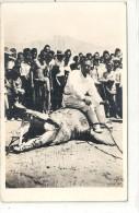 Ned.Indie-Krokodillenvangst - Indonesien