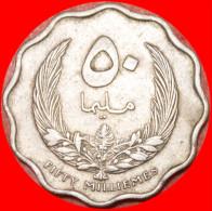 ★KINGDOM ★ LIBYA★ 50 MILLIEMES 1965!  LOW START★NO RESERVE! - Libyen