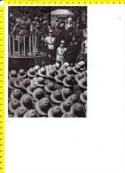 CO-4953 IL DUCE DEL FASCISMO BENITO MUSSOLINI DURANTE UN COMIZIO NEL 1939 - Chromos