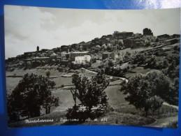 1969  MONTELATERONE - Grosseto