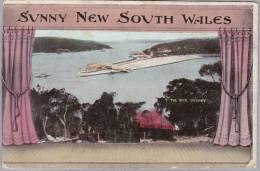 AK Ozeanien AUSTRALIEN 1909-07-05 Sydney Nach Dresden Sunny New South Wales - Sydney