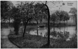 Boitsfort Watermael  Tenreuken Bord étang Pont 1935 état Superbe - Watermael-Boitsfort - Watermaal-Bosvoorde