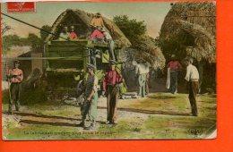 Le Labeur Fait Trouver Plus Doux Le Repos (attelage- Moisson) -Agriculture - Agriculture
