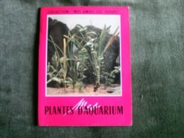 Plantes D`Aquarium - Collection Mes Amies Les Fleurs - Jardinage