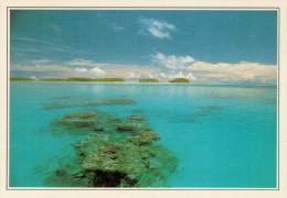 POLINESIA   RANGIROA:  LA  LAGUNA      (NUOVA CON DESCRIZIONE DEL SITO SUL RETRO) - Polinesia Francese
