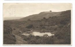 GB Vintage Postcard The Warren Folkestone Kent Posted In 1928 - Folkestone