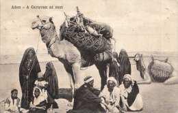 ADEN - A Caravan At Rest, Karte Gel.1909 Mit Nachportomarke - Jemen
