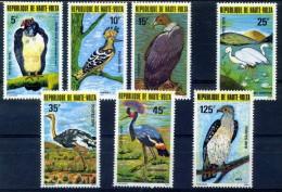 HAUTE VOLTA Oiseaux, Rapaces, Birds, Vögel, Yvert  N° 497/03  ** Neuf Sans Charniere MNH. - Arends & Roofvogels