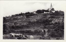 Environs De Dole - Mont-Roland - Le Mont Et La Chapelle - Autres Communes
