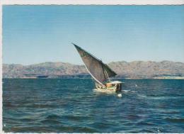 DJIBOUTI-BOUTRE Dans Le GOLFE De TADJOURA- - Bateaux
