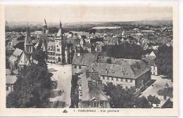 HAGUENAU - Vue Générale - Haguenau