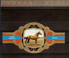 BAGUE DE CIGARE Grand Format 11,5 X 6 /LUGANO PAARDEN IV  N° 90 / CHEVAL : BOEDENNY - Bagues De Cigares