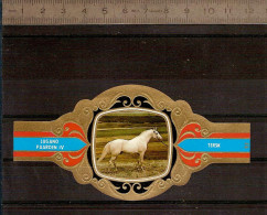 BAGUE DE CIGARE Grand Format 11,5 X 6 /LUGANO PAARDEN IV  N° 93 / CHEVAL : TERSK - Cigar Bands