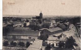 CULMSEE  -  Total.  Aôut 1916 - Poland
