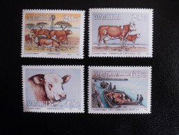 Namibia 1993 - Animals - Cows - Simmentaler Import - Namibie (1990- ...)