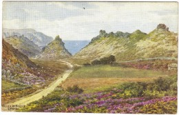 Valley Of Rocks By A R Quinton Colour Postcard - Unused - Salmon 2092 - Quinton, AR