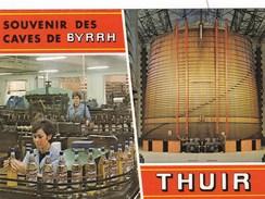 THUIR  ETABLISSEMENTS CUSENIER (FRED) - Commerce
