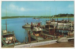 Long Island - Fishing Paradise - Long Island
