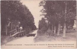 10. Passerelle Sur Le Chemin De MARNAY-SUR-SEINE à Courtavant - France
