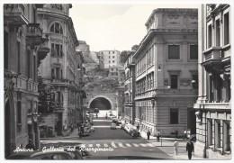 Ancona - Galleria Del Risorgimento - H2559 - Ancona
