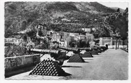 (RECTO / VERSO) MONACO - LES VIEUX CANONS DE LA PLACE DU PALAIS - BEAU CACHET - FORMAT CPA - Fürstenpalast