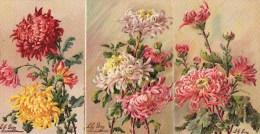 54Ace  Lot De 6 Cpa  De Fleurs Illustrateur Lily Giry - Illustrateurs & Photographes