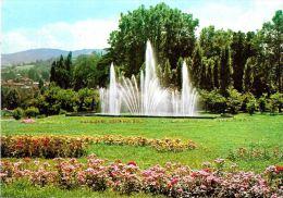 [DC5486] CARTOLINA - TORINO - PARCO DEL VALENTINO E FONTANA LUMINOSA - Non Viaggiata - Old Postcard - Parcs & Jardins