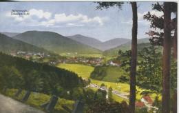 Herrenalb V. 1916  Dorfansicht (44886) - Bad Herrenalb