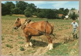 PLOUGASNOU (29) - ROLLAND LE ROUX AU SARCLAGE - 8/1991 - 300 EX./ETAT NEUF - Cultures